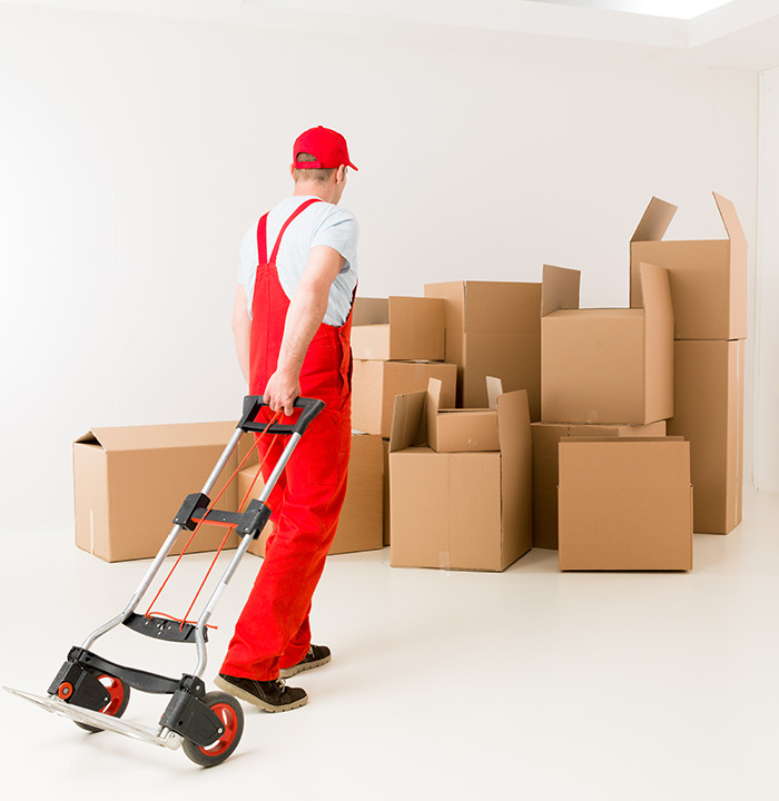 ▷ DGA Courier Services UK - Any freight, we've got it covered!